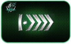 Silver Elite Master Instant Prime account