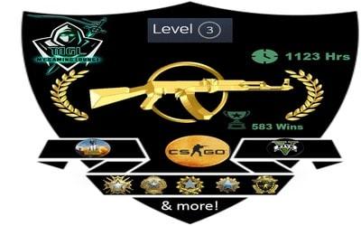 MG2 High Tier Account